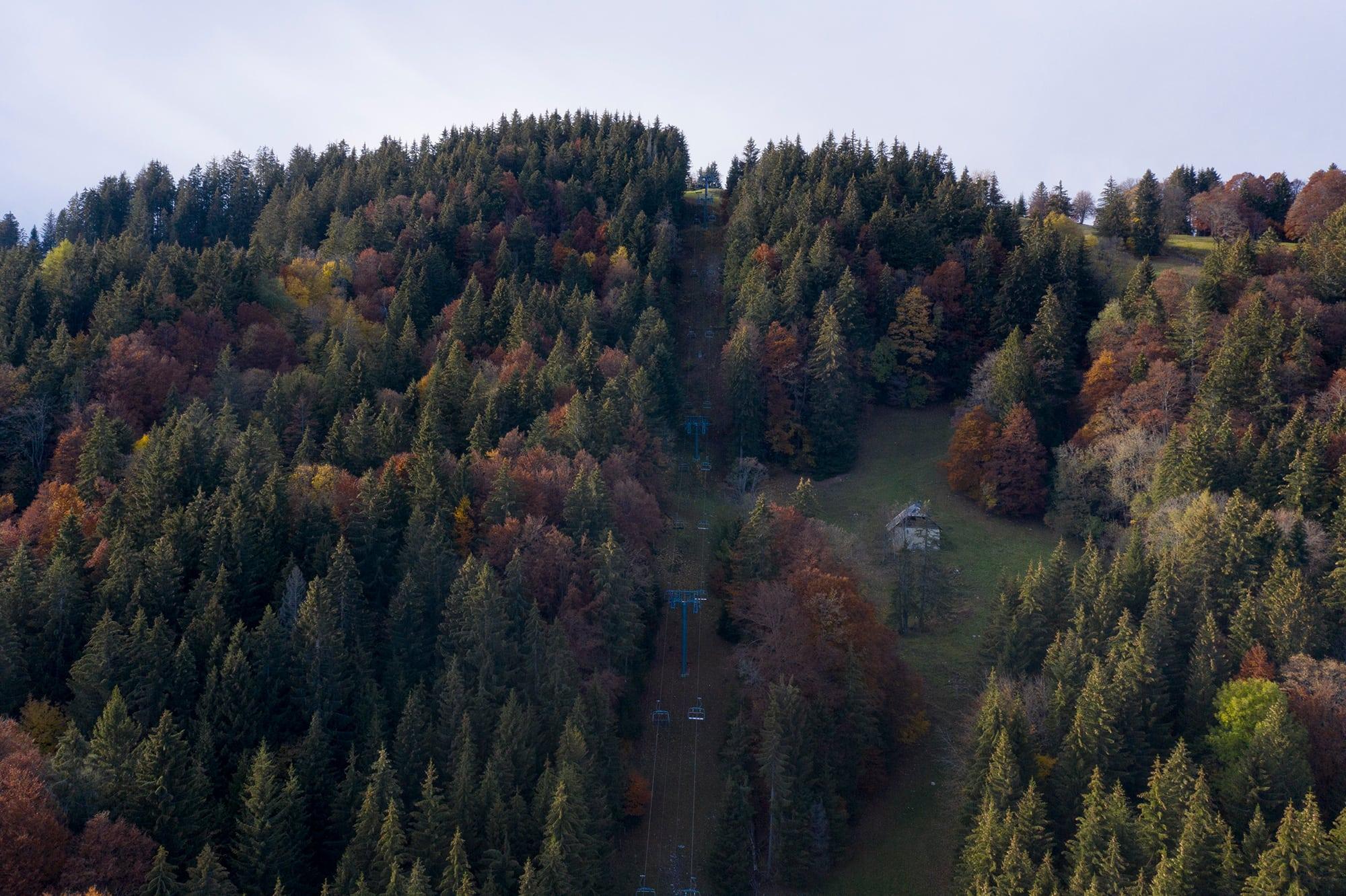 télésiège passant au milieu d'une forêt